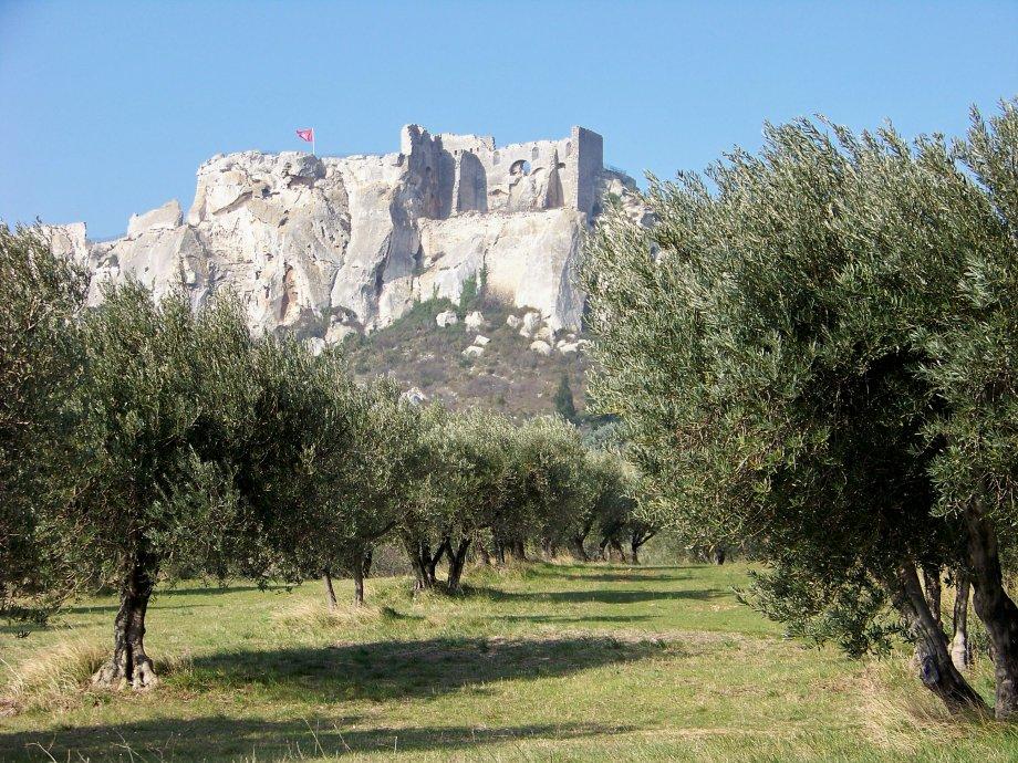 Camping La Source : Les Alpilles 3